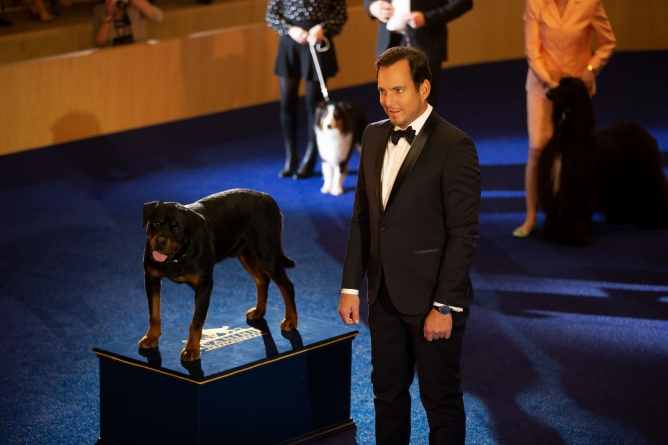 Picture from Show Dogs Gets A Needed Makeover