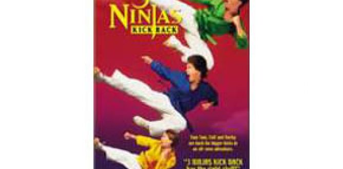 Picture from 3 Ninjas Kick Back