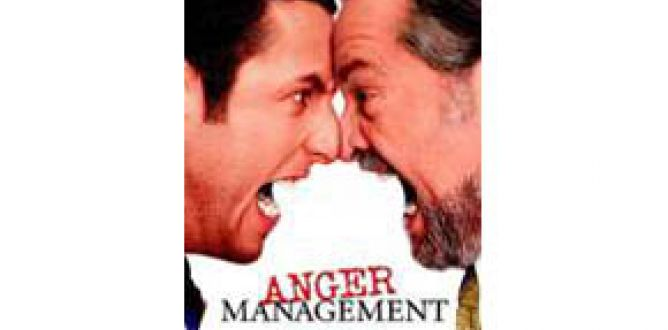Anger Management parents guide