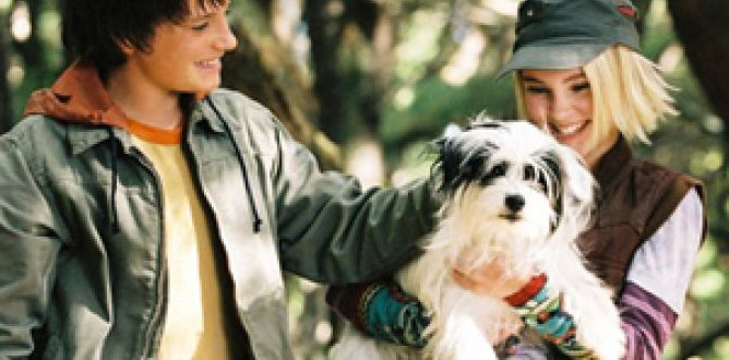 Picture from Bridge to Terabithia