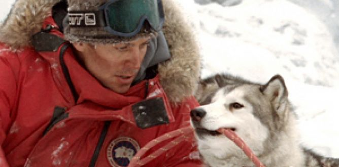 Picture from Eight Below