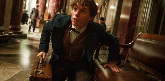 Picture from Fantastic Beasts and Where To Find Them