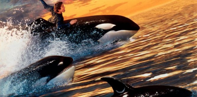 Free Willy 2: The Adventure Home parents guide