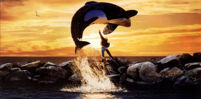 Picture from Free Willy