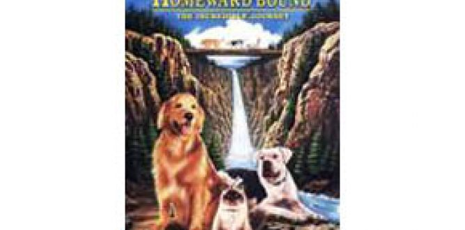 Picture from Homeward Bound: The Incredible Journey
