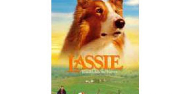 Picture from Lassie