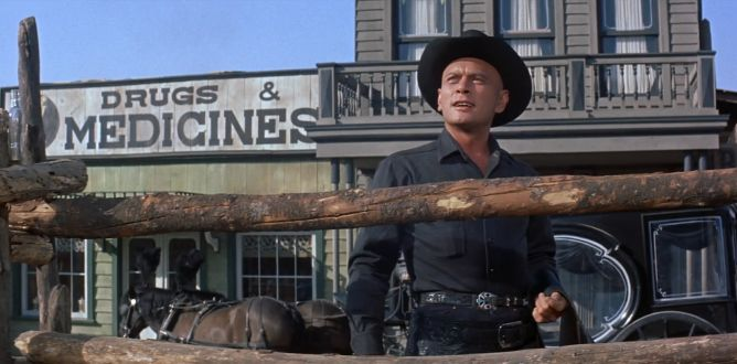 The Magnificent Seven (1960) parents guide