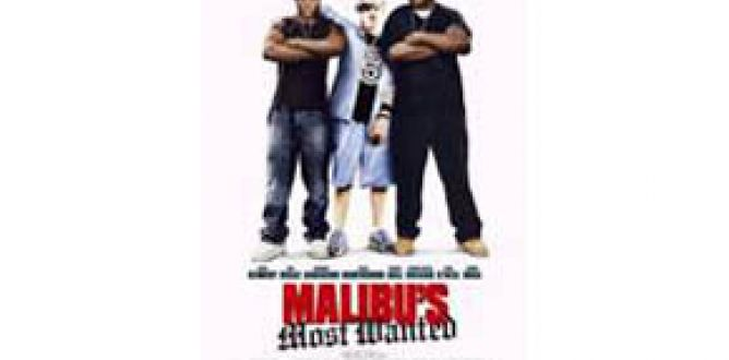 Malibu's Most Wanted (2003) parents guide