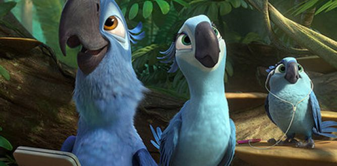 Picture from Rio 2