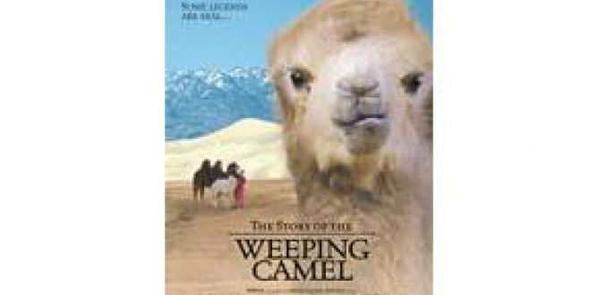 Picture from The Story of the Weeping Camel