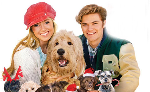 Still shot from the movie: 12 Dogs of Christmas: Great Puppy Rescue.