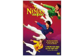 Still shot from the movie: 3 Ninjas Kick Back.