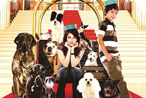 Still shot from the movie: Hotel For Dogs.
