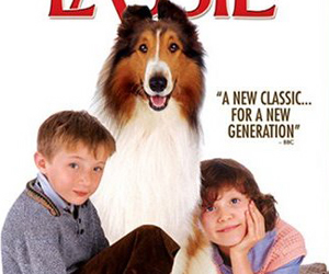 Still shot from the movie: Lassie (2006).