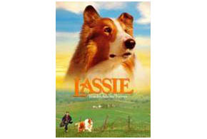 Still shot from the movie: Lassie.