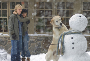 Still shot from the movie: Marley & Me.