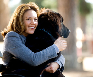 Still shot from the movie: Must Love Dogs.