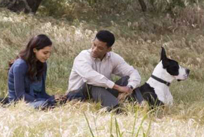 Still shot from the movie: Seven Pounds.