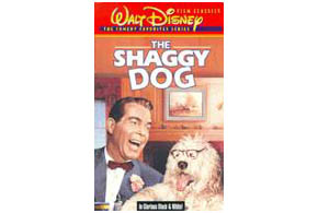 Still shot from the movie: The Shaggy Dog (1959).