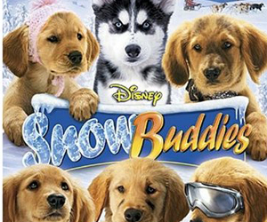 Snow Buddies Film