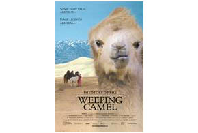 Still shot from the movie: The Story of the Weeping Camel.